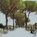 """""""Toscanaallee"""", Digitalkunst, Druck auf Leinwand, 31x28 cm"""