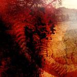 """""""Surreale Wüstenlandschaft"""", Digitalkunst"""