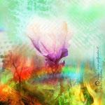 """""""Transformation im Feuer"""", Digitalkunst"""
