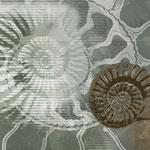 """Ammonoidea"", Digitalkunst, Unikat, Druck auf Canvas, 100x60 cm"
