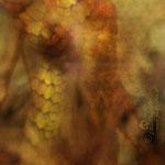 """""""Meerjungfau"""", Digitalkunst"""