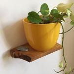 Pflanzenregal Kirsche DIY, natürliche Rand-Struktur teilweise belassen