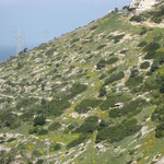 Karmel Gebirge