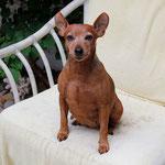 Tabatha mit knapp acht Jahren