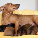Tabatha mit Babys auf dem Bett fürs Fotoshooting