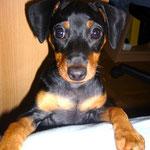Gloria mit 3,5 Monaten