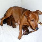 Brave Mama Tabatha nach der Geburt