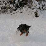 Schneebild II