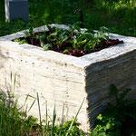 """Teil der Installation """"urban gardening"""" 2016 - Zeitungspapier"""