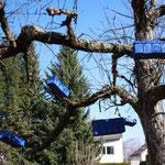 """""""Faulenzerbaum"""" Installation mit Spankörben im Apfelbaum - 2015"""