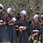 Hochzeitsgesellschaft in Capetown