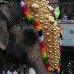 Der Cochin Carnival beginnt mit einem Elefanten