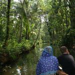 Ausflug in die Backwaters