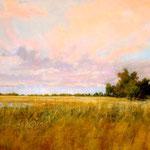 Wetland Sky