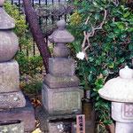 奈良県奈良市今辻子町の西照寺
