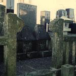 静岡県三島市泉町の国分寺