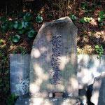 神奈川県某所