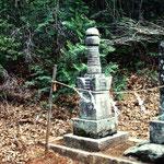 長野県下伊奈郡阿智村丸山の八幡社