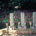 神奈川県下足柄郡箱根町湯本の早雲寺
