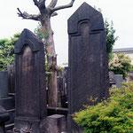 東京都豊島区巣鴨の本妙寺