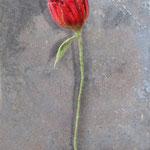 Blume Nr. | Flower No. 59 |   24 €   | ca. 30 cm