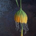 Glockenblume Nr. | Bell flower No. 7 |   35 €   | Ø ca. 14 cm