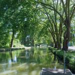 Canal à Dole