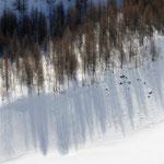 Ombre sul lago ghiacciato