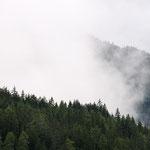 I boschi del monte Casella nelle nuvole