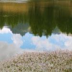 Riflessi sul lago di Lod