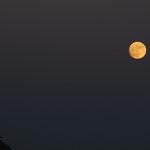 notte di luna piena