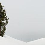 Cembro nella neve
