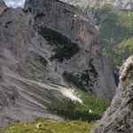 Bivacco Damiana dalla forcella dell'alpino
