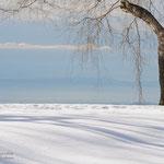 Betulla con vista ( Panoramica Zegna)