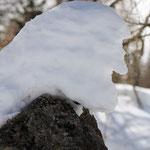 Ritratto d'inverno