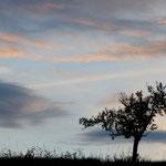 Solo nel tramonto (Alpi Giulie)