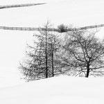 Scorci durante una nevicata