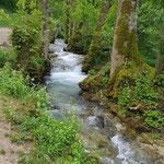 In Fluss kommen - Körperorientierte Therapie