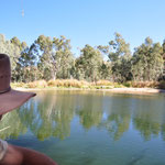Ellery Creek Bighole