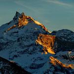 Schärhorn 3294 m