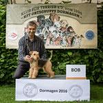 """Lakeland Terrier Hündin """"Bonnie von den Nibelungen"""""""