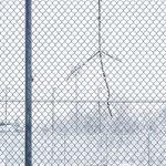 Winter Net 4 by Marcel Haag