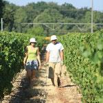 Marie-Loup et Jean-Paul inspectant les vignes