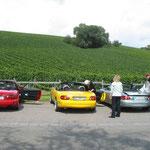 Rheintour 2006