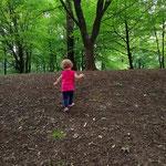 Waldausflug