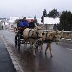 Die ersten Ausfahrten im Januar 2014 - wieder zuhause