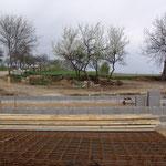 19. April 2015: Fertiges Streifenfundament, und die 4 Pflaumen-Bäume, die stehengeblieben sind, blühen dazu.