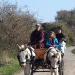 Vollbeladen mit Kindern und Müttern geht es durch die Lindabrunner Hügel!