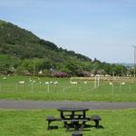 Landschaft auf der Isle of Arran