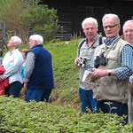 Vogelstimmenwanderung in Bad Lauterberg 2